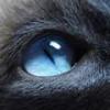 Поможет ли приворот черной магии, вернуть прежние отношения? - последнее сообщение от Наташка