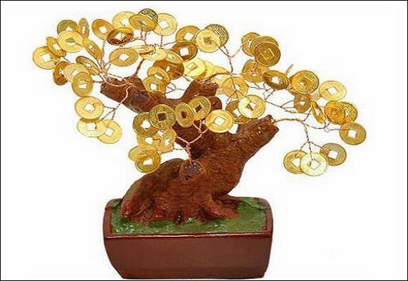 денежное древо
